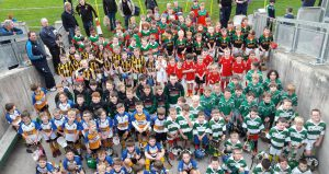 Successful U8 Hurling Blitz