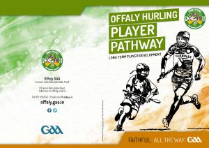 Download Offaly Hurling Player Pathway