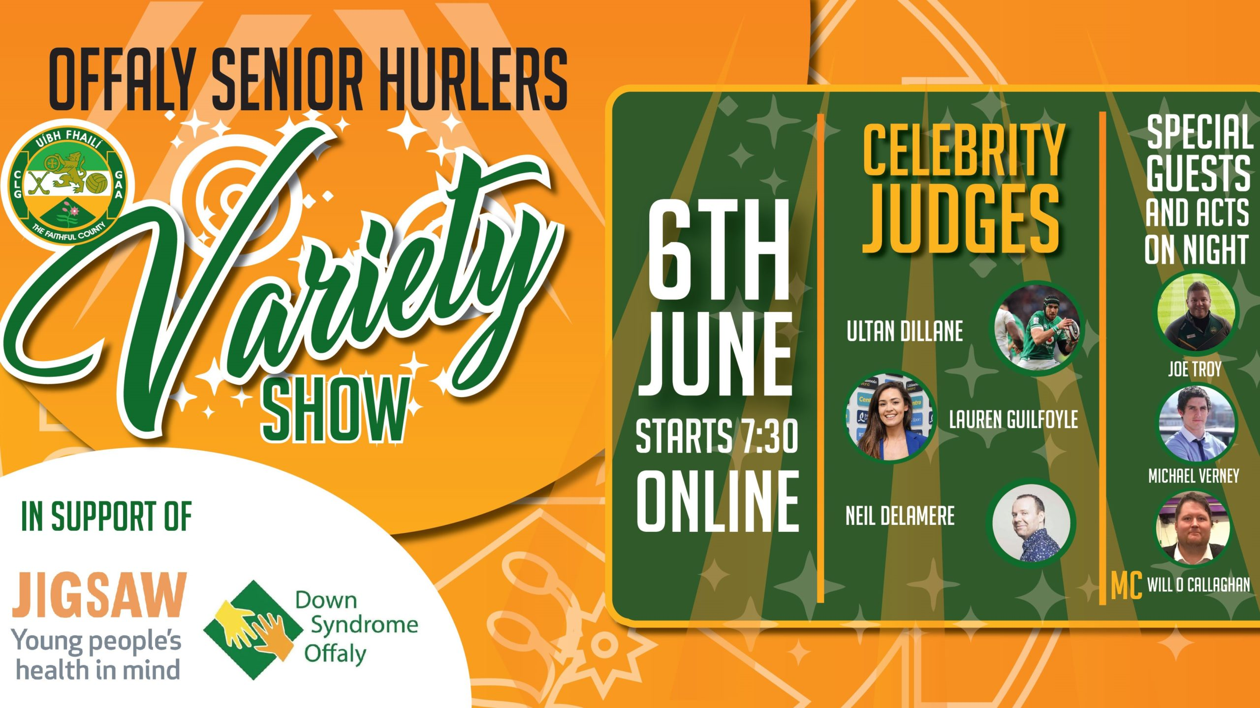 Log-In Info For Offaly Hurlers' Virtual Variety Show For Charity