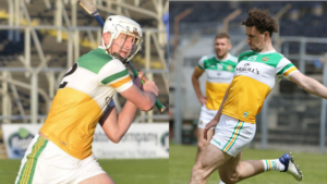 Offaly's Allianz League Campaigns Conclude This Weekend